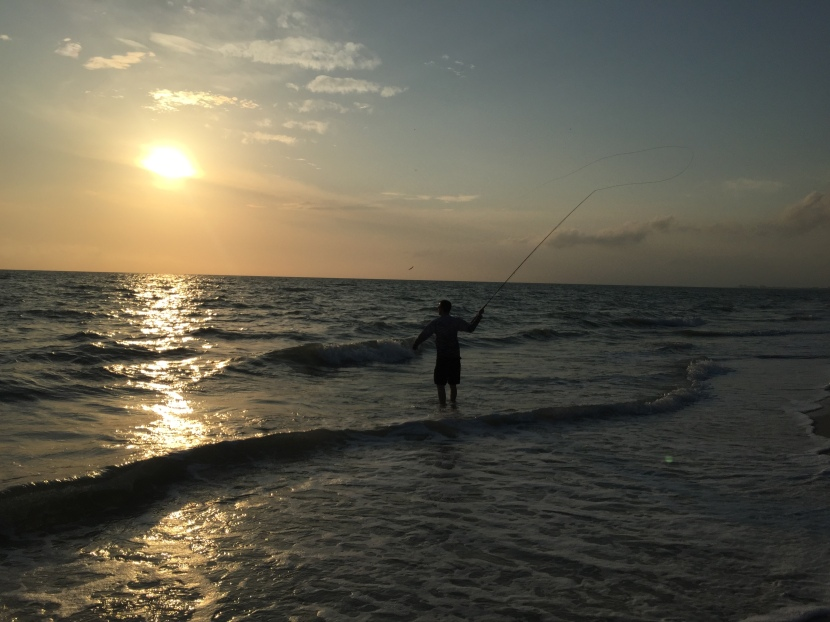 Fly fishing in thesurf